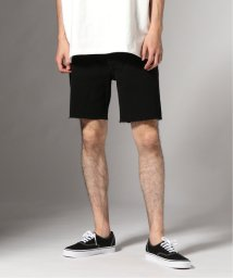 JOURNAL STANDARD/CK Jeans BLACK DENIM STRAIGHT ショーツ/502326060