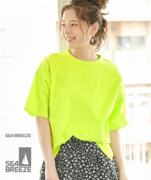 ROPE' PICNIC/【SEABREEZE×ROPE' PICNIC】カラーTシャツ/502326049