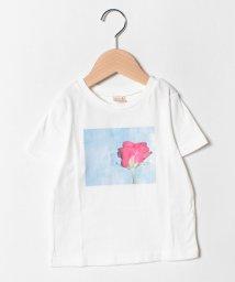 petit main/バラフォトプリントTシャツ/502313687