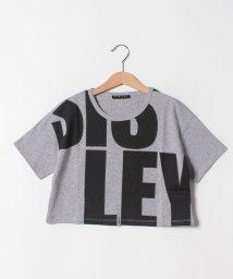SISLEY YOUNG/レタリングプリントショート丈半袖Tシャツ/502317479