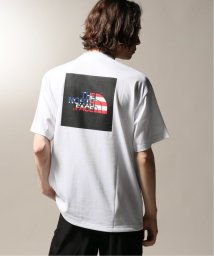 JOURNAL STANDARD relume Men's/THE NORTH FACE / ノースフェイス  SS NTL FLG SQ LG TEE/502331523