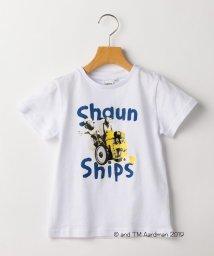 SHIPS KIDS/SHIPS KIDS:【ひつじのショーン】<MAYHEM IN THE MEADOW!>Tシャツ(100~130cm)/502332829