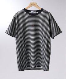 EDIFICE/STONE ISLAND / ストーン アイランド MARINA ボーダーロゴプリントTシャツ/502340679