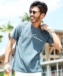JIGGYS SHOP/サマーパイルTシャツ / Tシャツ 半袖 パイル プリント ティーシャツ/502342405