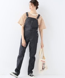 JOURNAL STANDARD/【MARU TO/マルト】OverAll Straight:オーバーオール/502353973