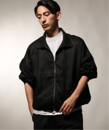 JOURNAL STANDARD relume Men's/MONITALY / モニタリー  Old Dog Blouson/502365982