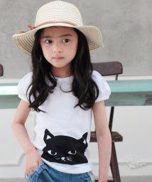 Rora/キャンディー 子ネコTシャツ/502377706