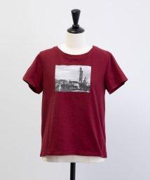 Noela/モロッコプリントTシャツ/502363547