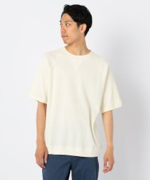 GLOSTER/ワッフルラグランTシャツ/502373687