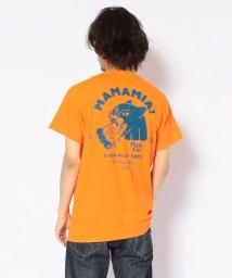 BEAVER/AlexanderLeeChang/アレキサンダーリーチャン 別注 PIZZA CAT TEE ピザキャットTシャツ/502387116