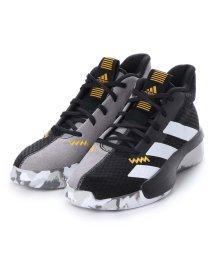 adidas/アディダス adidas PRO NEXT K F97305-18.0  コアブラック/フッ (コアBLACK)/502391842