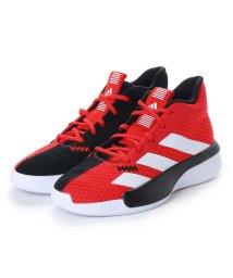 adidas/アディダス adidas PRO NEXT K EF0855-18.0  アクティブレッド (RED)/502391844
