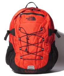 THE NORTH FACE/THE NORTH FACE T0CF9C 3LZ BOREALIS DPACK/502381110