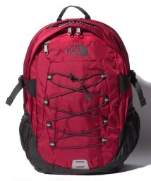 THE NORTH FACE/THE NORTH FACE T0CF9C 5XB BOREALIS DPACK/502381112