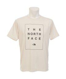 THE NORTH FACE/ノースフェイス/メンズ/S/S BOX TNF TEE/502394083