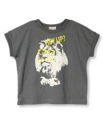 branshes/ライオングラフィック半袖Tシャツ(90~150cm)/502397770