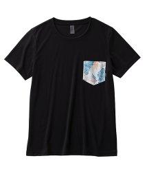 ROXY/ロキシー/レディス/BOTANICAL SHADOW POCKET TEE/502402100