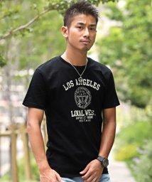 LUXSTYLE/カレッジプリント半袖Tシャツ/Tシャツ メンズ 半袖 プリント ロゴ/502410315