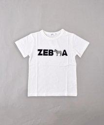 SLAP SLIP/天竺ライオン/ゼブラプリントTシャツ/502327000
