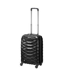ProtecA/エース プロテカ スーツケース 機内持ち込み 超軽量 Sサイズ 37L ACE PROTeCA 01821 エアロフレックスライト/502440612