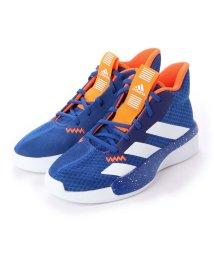 adidas/アディダス adidas PRO NEXT K EF0856  ブルー/アクティフ (BLUE)/502453707