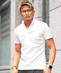 LUXSTYLE/ストライプテレコイタリアンカラー半袖ポロシャツ/ポロシャツ メンズ 半袖 イタリアンカラー テレコ/502458045