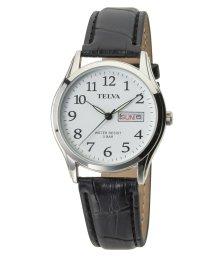 CREPHA PLUS/TELVA テルバ アナログウオッチ メンズ 腕時計【TE-AM176】/502466209