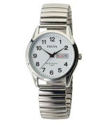 CREPHA PLUS/TELVA テルバ アナログウオッチ メンズ 腕時計【TE-AM179】/502466212