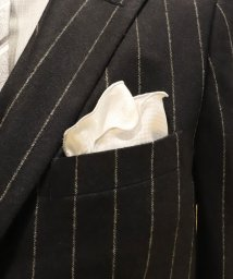 Men's Bigi/【ペイズリー柄×シルバー千鳥柄】リバーシブル円形ポケットチーフ/502393117