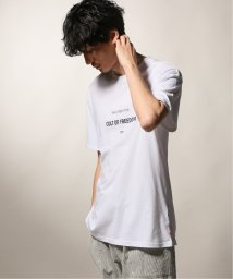 JOURNAL STANDARD relume Men's/GLOBE/グローブ  CULT OF FREEDOM Tシャツ/502491543