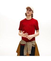LACOSTE Mens/ビッグロゴ刺しゅうクルーネックTシャツ/502498136