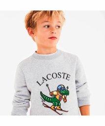 LACOSTE KIDS/スキークロコグラフィッククルーネックスウェット/502511183