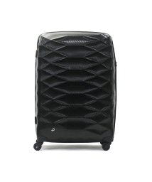 PROTeCA/プロテカ スーツケース PROTeCA エアロフレックスライト Aeroflex Light キャリーケース 93L エース ACE 01824/502517979