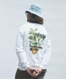 JOURNAL STANDARD relume Men's/SKIN / スキン PLANT PRINT ロングTシャツ/502520918