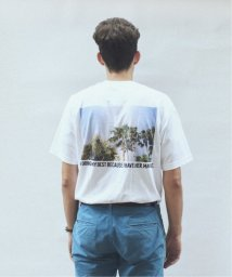 JOURNAL STANDARD relume Men's/SKIN / スキン PLANT PRINT Tシャツ/502520922