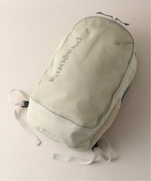 EDIFICE/Patagonia / パタゴニア Planing Divider Pack 30L/502529606