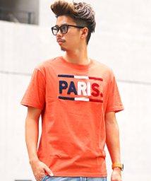 LUXSTYLE/サガラロゴ刺繍半袖Tシャツ/Tシャツ メンズ 半袖 ロゴ サガラ 刺繍/502520510