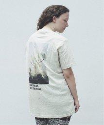JOURNAL STANDARD relume Men's/SKIN / スキン PLANT PRINT Tシャツ/502520922