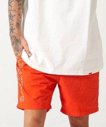 razz/RAZZIS【ラズ】Side logo swim short pants /502554728