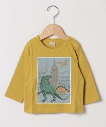 petit main/ボックス恐竜プリントTシャツ/502549160