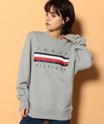 TOMMY HILFIGER MENS/ロゴ スウェット/GLOBAL LOGO CREW/502562181