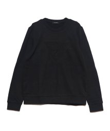 GUESS/ゲス GUESS EMBOSS TRIANGLE LOGO CREW SWEAT (BLACK)/502591585
