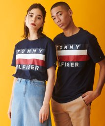 TOMMY HILFIGER MENS/【オンライン限定】ビッグ フラッグ Tシャツ / UPSTATE FLAG TEE/502570703