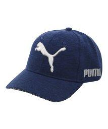 PUMA/プーマ/メンズ/ゴルフ スウェット キャップ/502593180