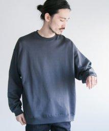 URBAN RESEARCH/クルーネック度詰めスーピマスウェット/501274901