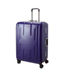 Z.N.Y/スーツケース Lサイズ エース ACE 90L フレームタイプ TSAロック Z.N.Y ゼット・エヌ・ワイ ラウビル 軽量 国内旅行 海外旅行 06382/502600658
