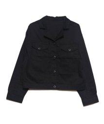 STYLEBLOCK/スタイルブロック STYLEBLOCK オープンカラーアウトドアシャツ (ブラック)/502611250