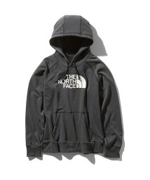 THE NORTH FACE/ノースフェイス/レディス/COLOR HEATHERED FLEECE HOODIE/502638952