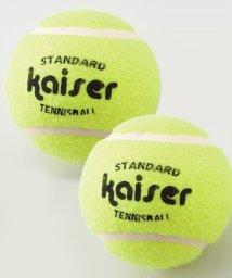 kaiser/硬式テニスボール 2P/502433065