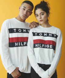 TOMMY HILFIGER MENS/UPSTATE FLAG LS TEE/502631378